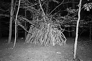 BELGIUM, Brussels. 8/05/2020: Constructions made by children in the Sonian Forest during the Covid-19 pandemic.