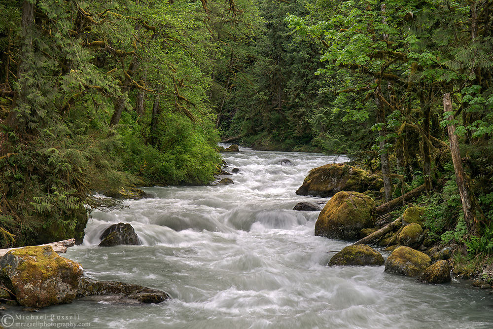 Spring runoff at Tamihi Creek in the Chilliwack River Valley.  Photographed from the Tamihi Creek Recreation Site in the Chilliwack River Valley, Chilliwack, British Columbia, Canada
