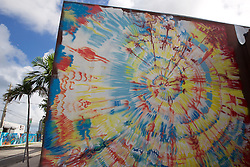 Street Mural, Wynwood