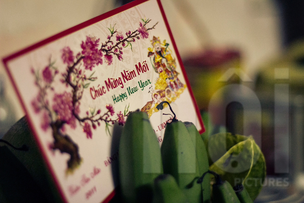 A greeting card wishes happy new year in vietnamese. Chuc mung nam moi ! Nam Dinh province, Vietnam, Southeast Asia