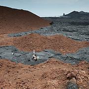 Taking a break on the black pahoehoe lava rock on Santiago Island. Ecuador