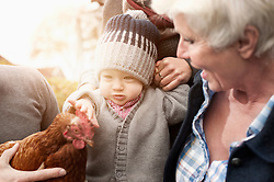 Family with chicken bird sitting in poultry farm, Bavaria, Germany