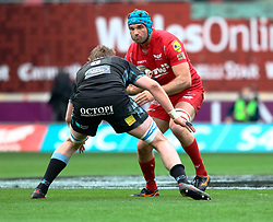 Scarlets' Tadhg Beirne lines Glasgow Warriors' Ryan Wilson<br /> <br /> Photographer Simon King/Replay Images<br /> <br /> Guinness PRO14 Round 19 - Scarlets v Glasgow Warriors - Saturday 7th April 2018 - Parc Y Scarlets - Llanelli<br /> <br /> World Copyright © Replay Images . All rights reserved. info@replayimages.co.uk - http://replayimages.co.uk