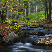 During this year's New England fall photography tours I encountered many beautiful scenes including this view of Stony Brook along NH-31. The winding brook immediately spoke to me and I instantly made a u-turn to explore the area. Glad I did, because after jumping across some rocks and boulders I was able to frame this image of the river and its calming environment. <br />