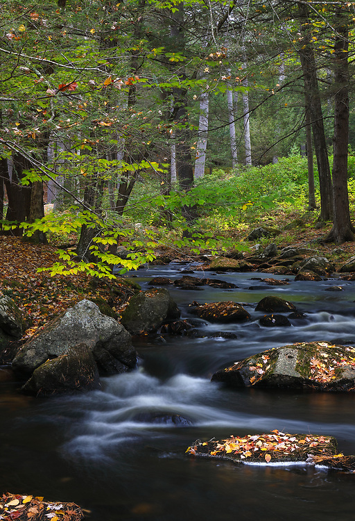 During this year's New England fall photography tours I encountered many beautiful scenes including this view of Stony Brook along NH-31. The winding brook immediately spoke to me and I instantly made a u-turn to explore the area. Glad I did, because after jumping across some rocks and boulders I was able to frame this image of the river and its calming environment. <br /> <br /> New Hampshire nature photography images are available as museum quality photography prints, canvas prints, acrylic prints or metal prints. Prints may be framed and matted to the individual liking and decorating needs at:<br /> <br /> https://juergen-roth.pixels.com/featured/some-day-juergen-roth.html<br /> <br /> All high resolution New Hampshire photography images are available for photo image licensing at www.RothGalleries.com. Please contact me direct with any questions or request. <br /> <br /> Good light and happy photo making!<br /> <br /> My best,<br /> <br /> Juergen<br /> Prints: http://www.rothgalleries.com<br /> Photo Blog: http://whereintheworldisjuergen.blogspot.com<br /> Instagram: https://www.instagram.com/rothgalleries<br /> Twitter: https://twitter.com/naturefineart<br /> Facebook: https://www.facebook.com/naturefineart