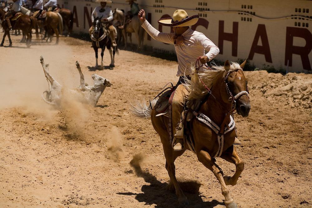 Sergio Gallindo celebrates a successful run during the coleadero at a charreada in San Antonio.