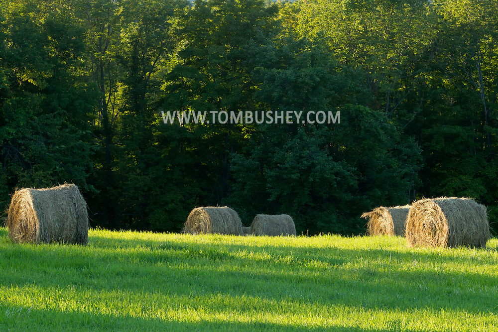 Mount Hoper, New York - Bales of hay in a farm field on Aug. 24, 2013.