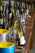 bottles glasses spittoons in the cellar tasting room dom a voge cornas rhone france