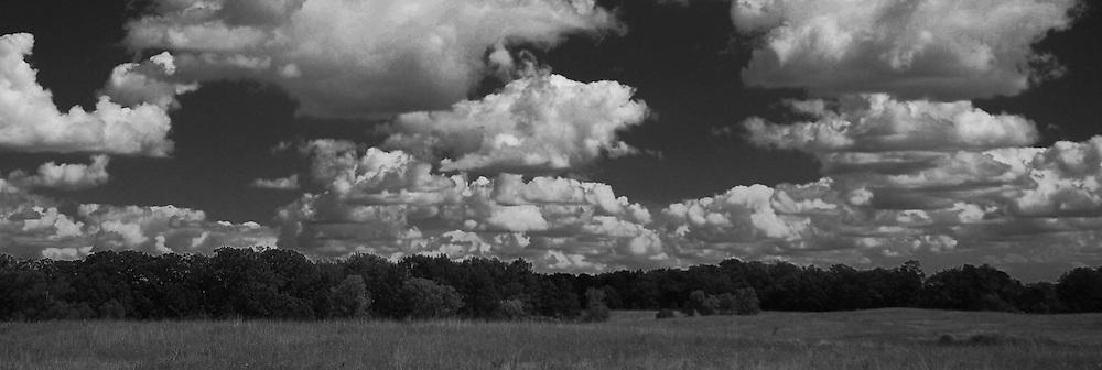 View of prairie at Lake Elmo, Minnesota