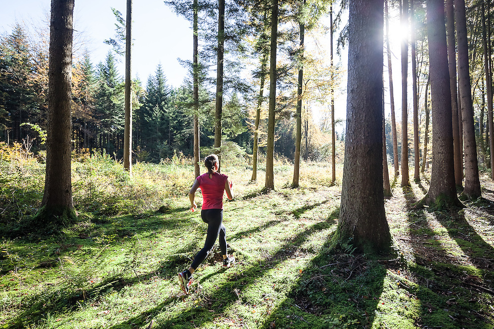 Joggerin im herbstlichen sonnendurchfluteten Wald, Berg, Bayern,Deutschland * girl running through sunlit woods in fall, Berg, Bavaria, Germany