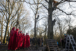 Harefield, UK. 18 January, 2020. The Red Rebel Brigade shows support for earth protector Freeman in the same tree at the Harvil Road wildlife protection camp in which he spent over two days and two nights earlier in the week. The camp was today reoccupied by activists from Extinction Rebellion, Stop HS2 and Save the Colne Valley on the second day of a three-day 'Stand for the Trees' protest in the Colne Valley timed to coincide with tree felling work by HS2. Bailiffs acting for HS2 had evicted all but two activists from the camp the previous week. 108 ancient woodlands are set to be destroyed by the high-speed rail link.