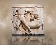 Sculpture of Lapiths and  Centaurs battling from the Metope of the Parthenon on the Acropolis of Athens no XXVII. Also known as the Elgin marbles. British Museum London. This is one of the most dramatic compositions of the Metopes with the Lapith preparing to make a final strike and the cloak of the Centaur fanning out .<br /> <br /> If you prefer to buy from our ALAMY STOCK LIBRARY page at https://www.alamy.com/portfolio/paul-williams-funkystock/greco-roman-sculptures.html . Type -    Elgin    - into LOWER SEARCH WITHIN GALLERY box - Refine search by adding a subject, place, background colour, etc.<br /> <br /> Visit our ROMAN WORLD PHOTO COLLECTIONS for more photos to download or buy as wall art prints https://funkystock.photoshelter.com/gallery-collection/The-Romans-Art-Artefacts-Antiquities-Historic-Sites-Pictures-Images/C0000r2uLJJo9_s0