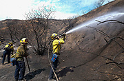 Firefighters douse the hot spots from a wildfire, Monday, Sept. 4, 2017, in the Sunland-Tujunga of Los Angeles, the United States, on Sept. 4, 2017. More than 1,000 firefighters work for a fourth day to put out a 7,000-acre brushfire that is 30 percent contained, as the last of the residents ordered to evacuate the record-setting blaze were expected to return to their homes authorities said. (Xinhua/Zhao Hanrong)(Photo by Ringo Chiu)<br /> <br /> Usage Notes: This content is intended for editorial use only. For other uses, additional clearances may be required.