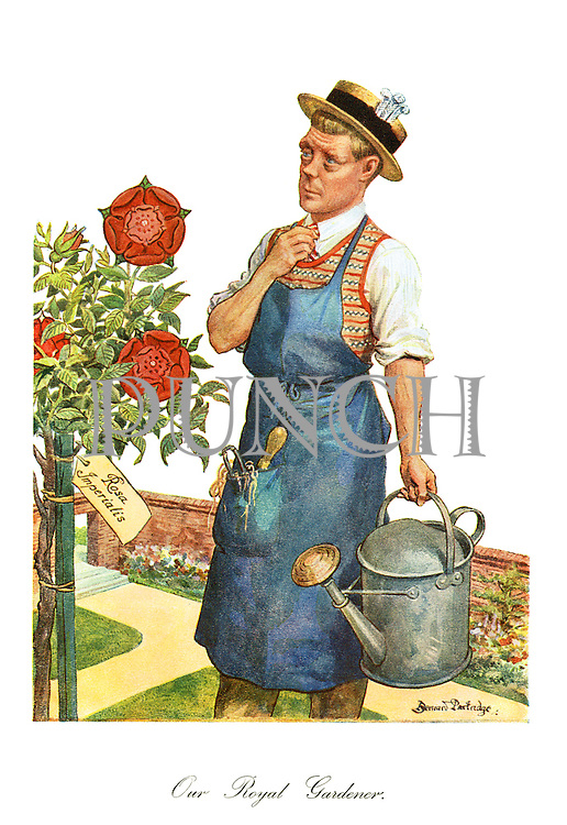 Our Royal Gardener. (The Prince of Wales, later Edward VIII, Duke of Windsor as a gardener watering his Imperial Roses)