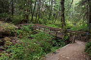 The Reservoir Trail Bridge over Steelhead Creek at the Hayward Lake Recreation Area in Mission, British Columbia, Canada