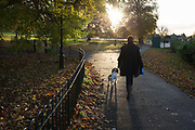A lady walks her dog into afternoon, autumnal sunlight in Ruskin Park, on 7th November 2019, in Lambeth, London, England.