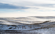 Howling wind, blowing snow, big sky and soft hilly terrain seen from the Crowsnest Highway in Southern Alberta, Canada