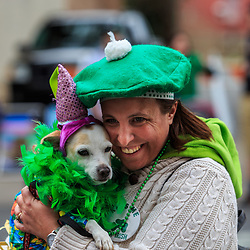 York, PA - March 12, 2016 Both the dog and the owner are dressed in green at the annual Saint Patrick's Day Parade in the downtown City of York, Pennsylvania.