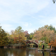 NEW YORK, NEW YORK - OCTOBER 22: A fall scene in Central Park, Manhattan, New York. 4th November 2017. (Photo by Tim Clayton/Corbis via Getty Images)