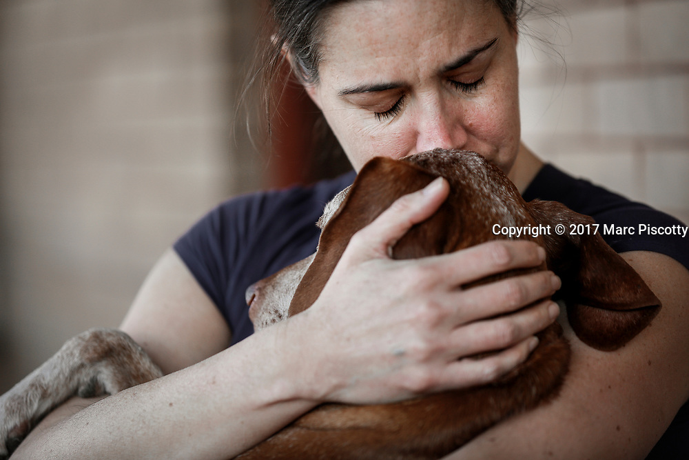 SHOT 2/21/17 2:35:05 PM - Tanner, a 12 year-old male Vizsla, gets a hug from his mom Margaret Ebeling in Denver, Co. The Vizsla, is a dog breed originating in Hungary. The Hungarian or Magyar Vizsla represents one of the best in sporting dogs and loyal companions and has a strong claim to being one of the smallest of the all-round pointer-retriever breeds. The Vizsla's size is one of the breed's most attractive characteristics and through the centuries he has held a unique position for a sporting dog -- that of household companion and family dog. The Vizsla is a natural hunter endowed with a good nose and an above average trainability. Although they are lively, gentle mannered, demonstrably affectionate and sensitive, they are also fearless and possessed of a well-developed protective instinct.<br /> (Photo by Marc Piscotty / © 2017)