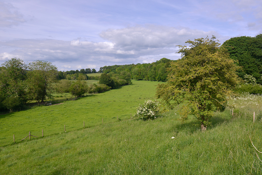 Test Valley and water meadows near Whitchurch, Hampshire
