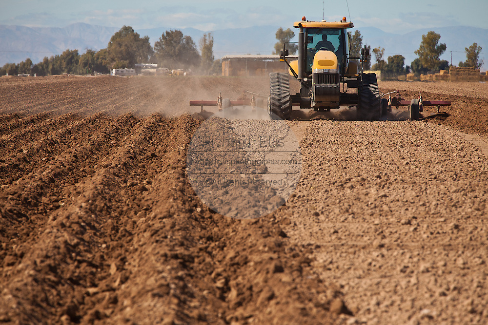 Agricultural tractor plows a field in the Imperial Valley Niland, CA.