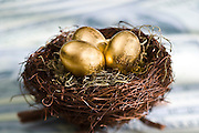 Three Golden Eggs in a birds nest on U.S. currency.