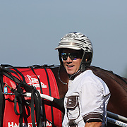 Driver Brian Sears and Royalty For Life after winning the $1.2 million Hambletonian final for 3-year-old trotters on at The Meadowlands Harness Racetrack, East Rutherford, New Jersey, USA.  3rd August 2013. Photo Tim Clayton