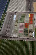 Nederland, Noord-Holland, Gemeente Anna Paulowna, 28-04-2010; bloembollenvelden in de Anna Paulowna Polder met voornamelijk tulpen en narcissen. Door de zandgrond is de polder in Kop van Noord-Holland (Noordkop) is een ware bollenstreek..Flower fields in the Anna Paulownapolder, with mostly tulips and daffodils. Because of the sandy soil the polder in the very north of North-Holland is a true flower bulb region. .luchtfoto (toeslag), aerial photo (additional fee required).foto/photo Siebe Swart