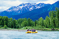 Whitewater rafting (with Glacier Raft Company), Flathead Valley, near West Glacier, Montana USA