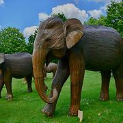 CoExistence looks like a replica of China as the 500km elephant trek