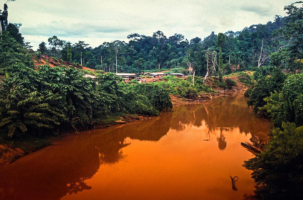 Tagal River, Borneo, Malaysia, SE Asia