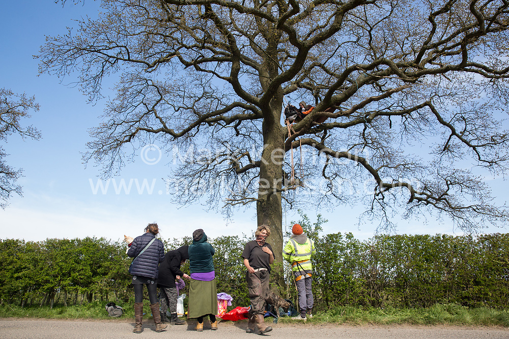 Stop HS2 activists occupy a mature oak tree in order to try to prevent it and two other oak trees from being felled to construct a temporary access road for the HS2 high-speed rail link on 26th April 2021 in Quainton, United Kingdom. Environmental activists continue to oppose the controversial HS2 project from a series of protection camps along its Phase 1 route between London and Birmingham.