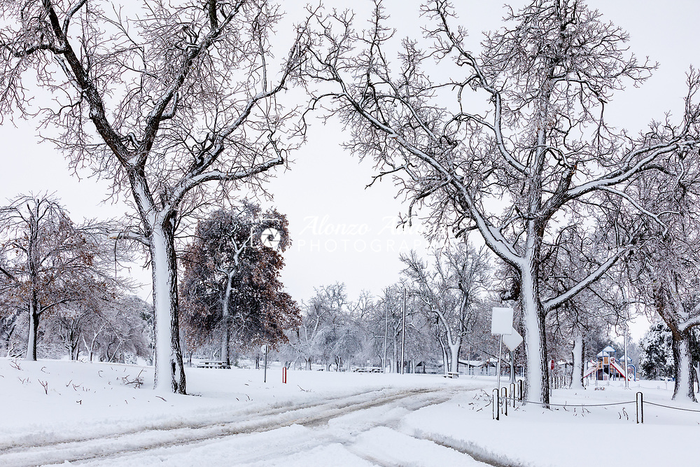 Snow covers trees along a rural road in Oklahoma City on January 1, 2021. Photo copyright © 2021 Alonzo J. Adams.
