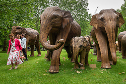 © Licensed to London News Pictures. 17/06/2021. LONDON, UK.  People views some of the 100 wooden elephants on display in Green Park, part of the CoExistence herd.  Handcrafted from a natural plant material called Lantana camara, the wooden elephants are currently on an installation tour of the UK to highlight a crowded planet and human encroachment on wild places.   Photo credit: Stephen Chung/LNP