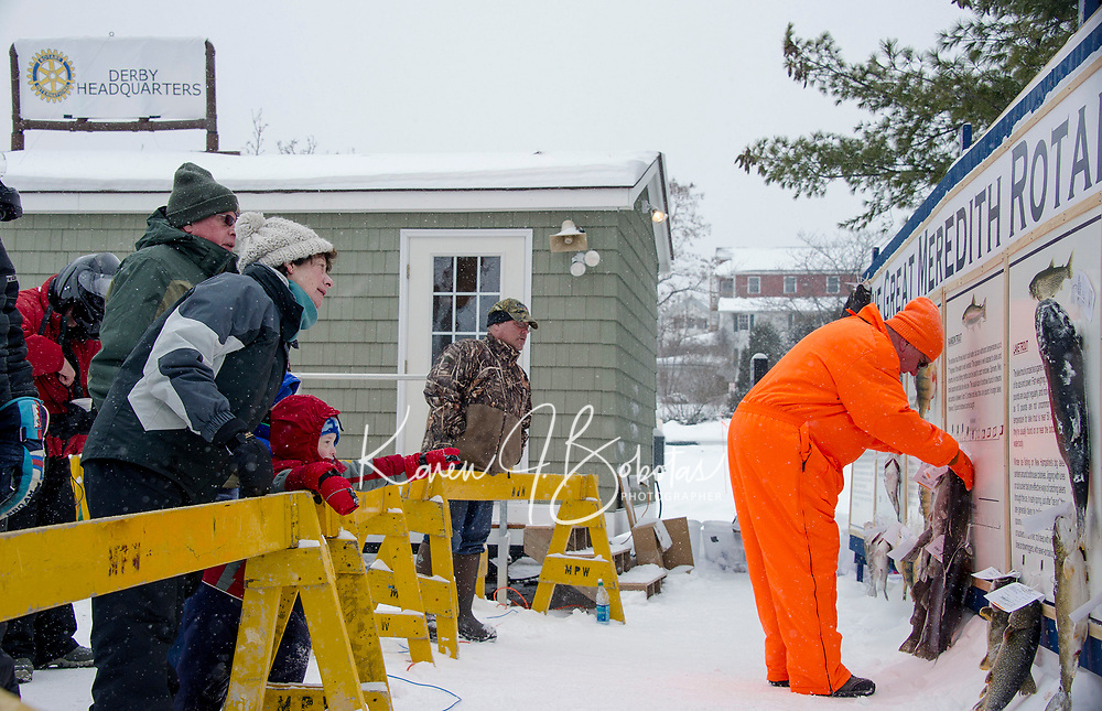 """Fish being posted on the """"Wall"""" during last winter's Great Meredith Rotary Fishing Derby.  Karen Bobotas for the Laconia Daily Sun"""