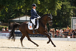 Heijkoop Danielle, (NED), El Torro B<br /> Final 6 years old horses<br /> World Championship Young Dressage Horses - Verden 2015<br /> © Hippo Foto - Dirk Caremans<br /> 09/08/15