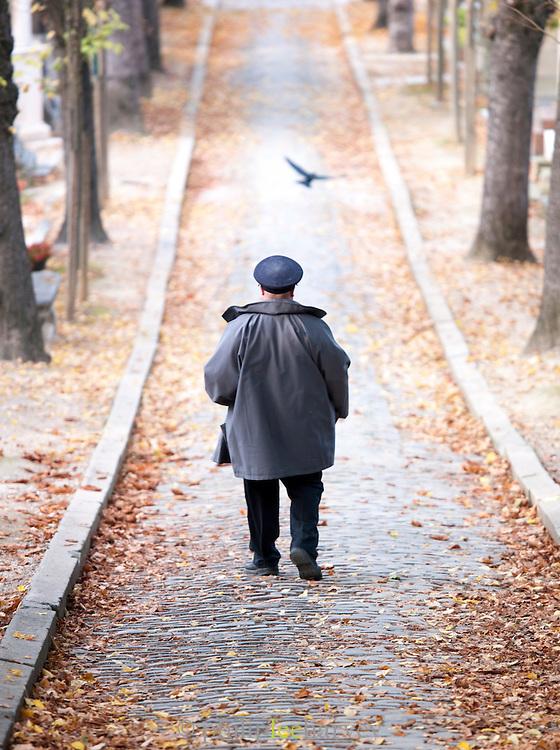 Man walking through Cimetier du Pere Lachaise, Paris, France