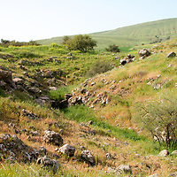 Galilee-Lower East