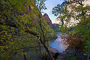 Riverside Walk, Zion National Park, Utah