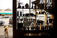 The General Store offers local crafts and vintage items, in San Francisco's far western neighborhood, the Outer Sunset, on Saturday, Oct. 23, 2010.