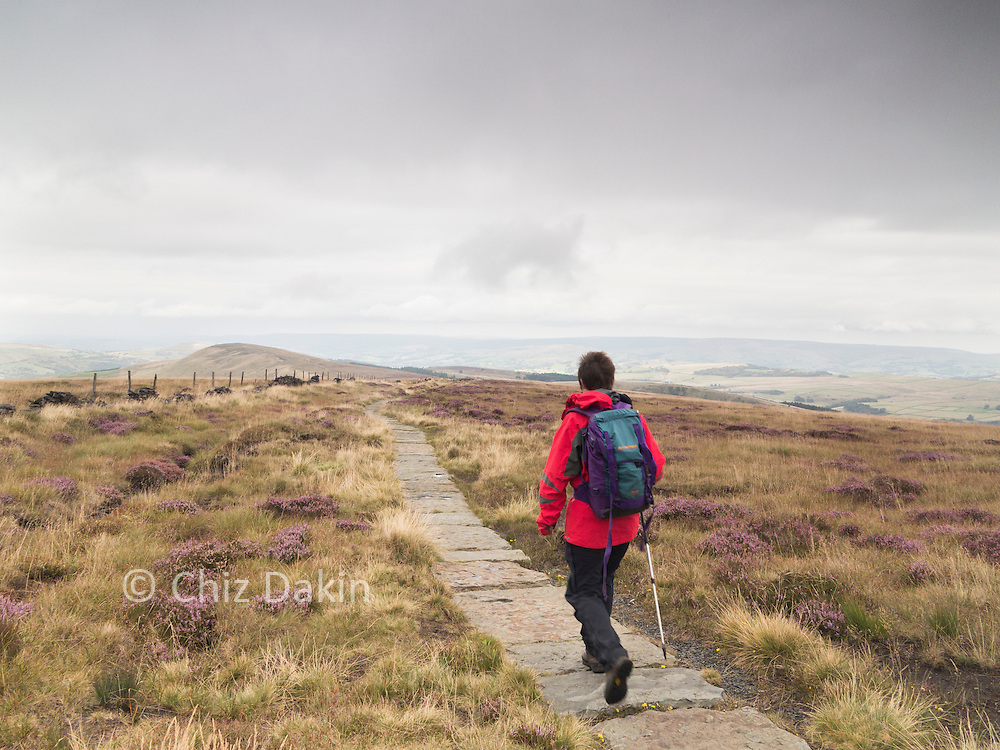 The Path from Shining Tor to Cats Tor