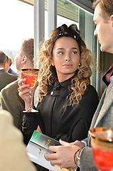 NEWBURY, ENGLAND 26TH NOVEMBER 2016: Ella Eyre at Hennessy Gold Cup meeting Newbury racecourse Newbury England. 26th November 2016. Photo by Dominic O'Neill