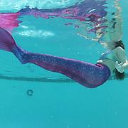 Mermaid Pool 2