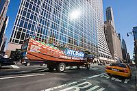 New york City in October 2008