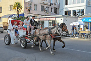 Horse and cart carries holidaymakers on a site seeing tour of Batumi, Georgia