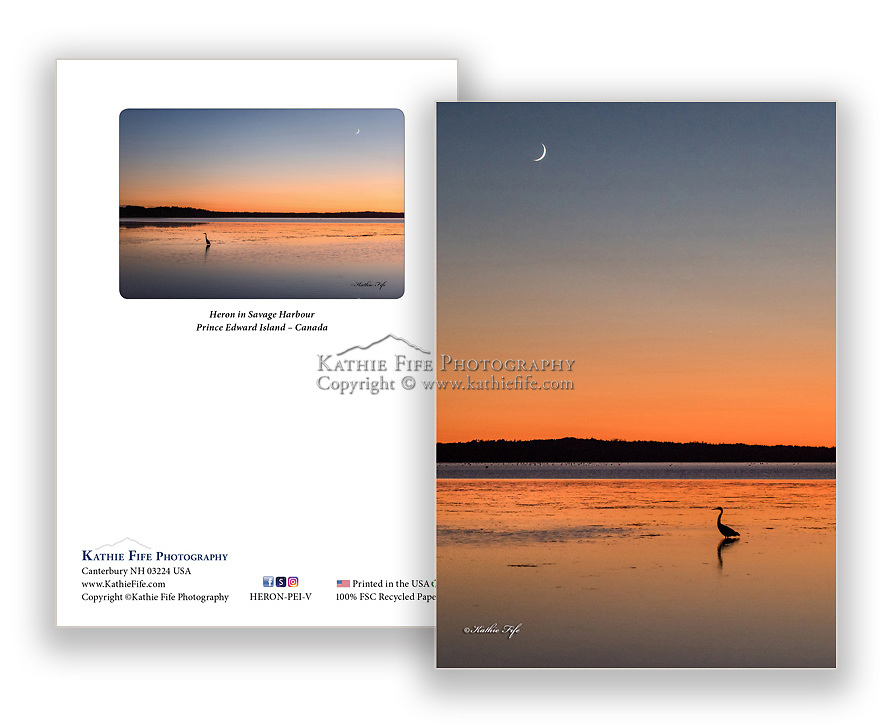 Heron at sunset Savage Harbour Prince Edward Island<br /> 5x7 Greeting Card 100% Recycled Paper