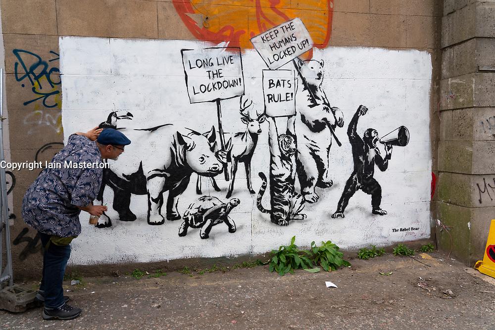 Edinburgh, Scotland, UK. 2 June 2020. New Covid-19 lockdown themed mural by The Rebel Bear artist appears on a wall in Edinburgh. Iain Masterton/Alamy Live News