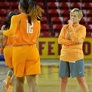2016 NCAA Division I Women's Basketball Championship