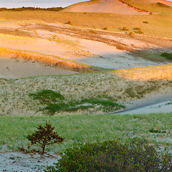 "The dunes in the ""Provincelands"" of Cape Cod National Seashore, Provoincetown, Massachusetts."